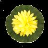 Украшение для сада Лотос, 20 см