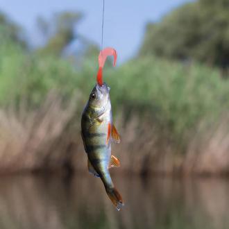 Набор приманок для рыбалки, 15 шт.
