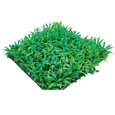 Настил Трава искусственная, 25х25 см